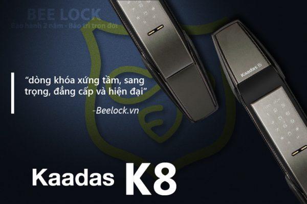 thiet-ke-kaadas-k8