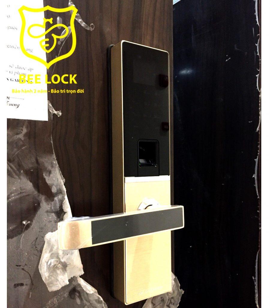 Khóa cửa Wifi Dessmann A800-P ( Đức)