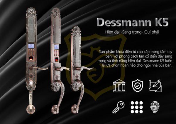 khóa cửa vân tay tân cổ điển dessmann k5