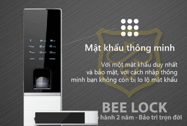 mat-khau-thong-minh-dessmann-g811fp